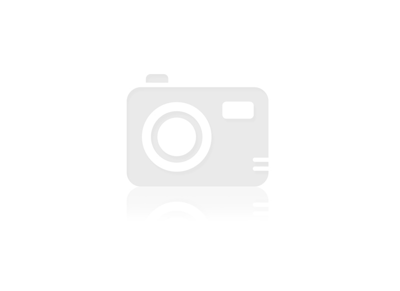 Standard V240 V-Falz Handtuch gruen